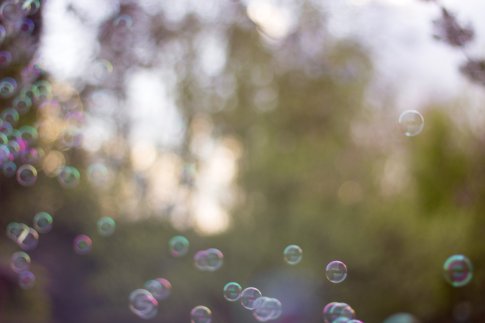 Seifenblasen Sturm Sonnenuntergang
