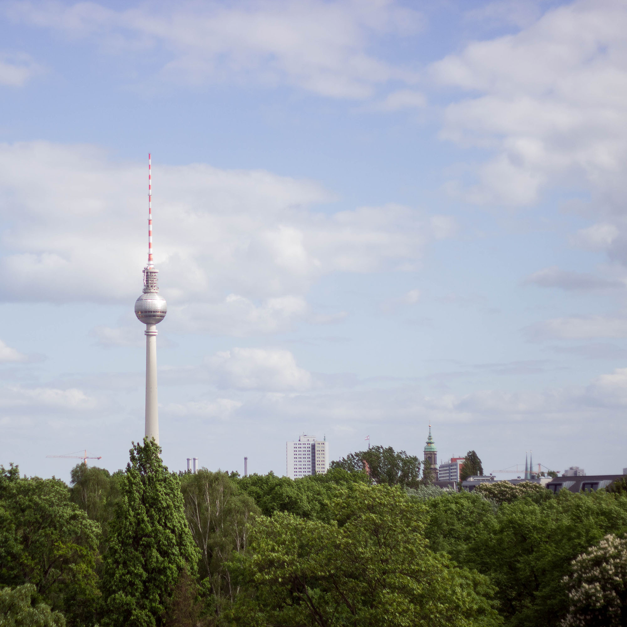Berlin im Quadrat Alexander-9635