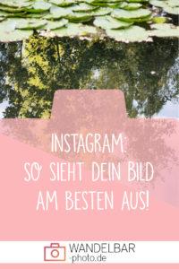 Instagram - So sieht dein Bild am besten aus!