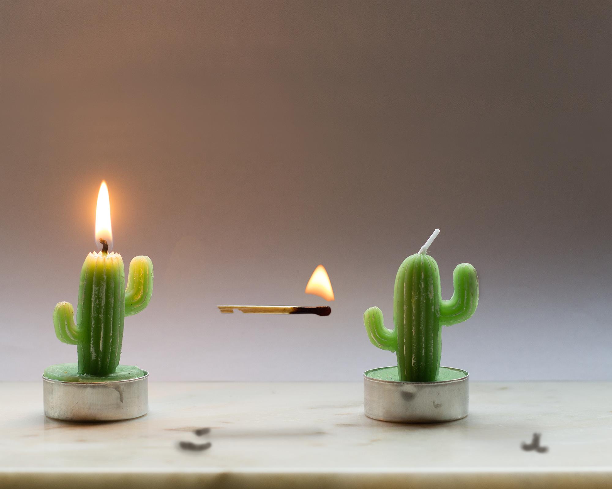 Bildmontage Kaktus Kerzen Schatten