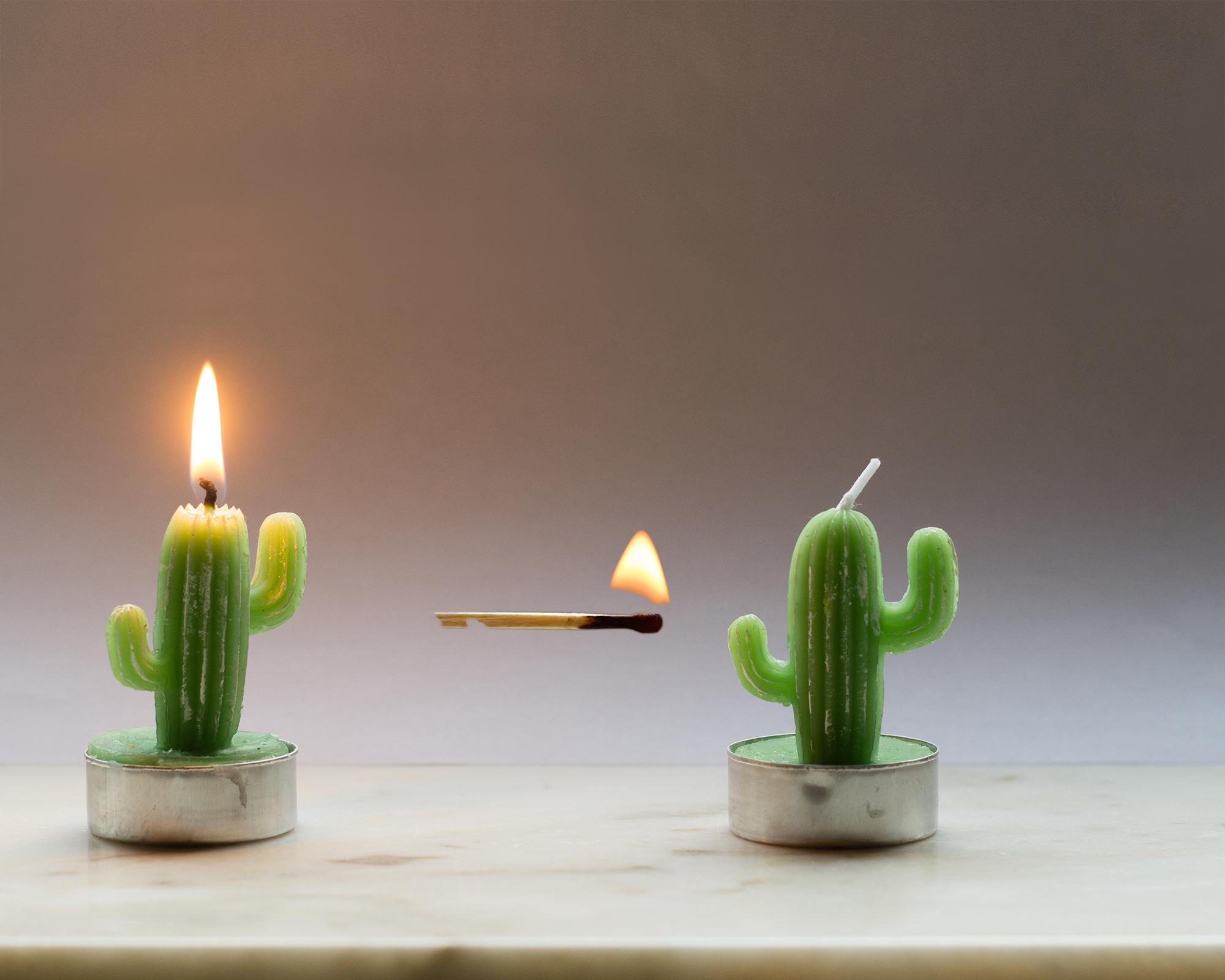 Bildmontage Kaktus Kerzen Streichholz eingearbeitet