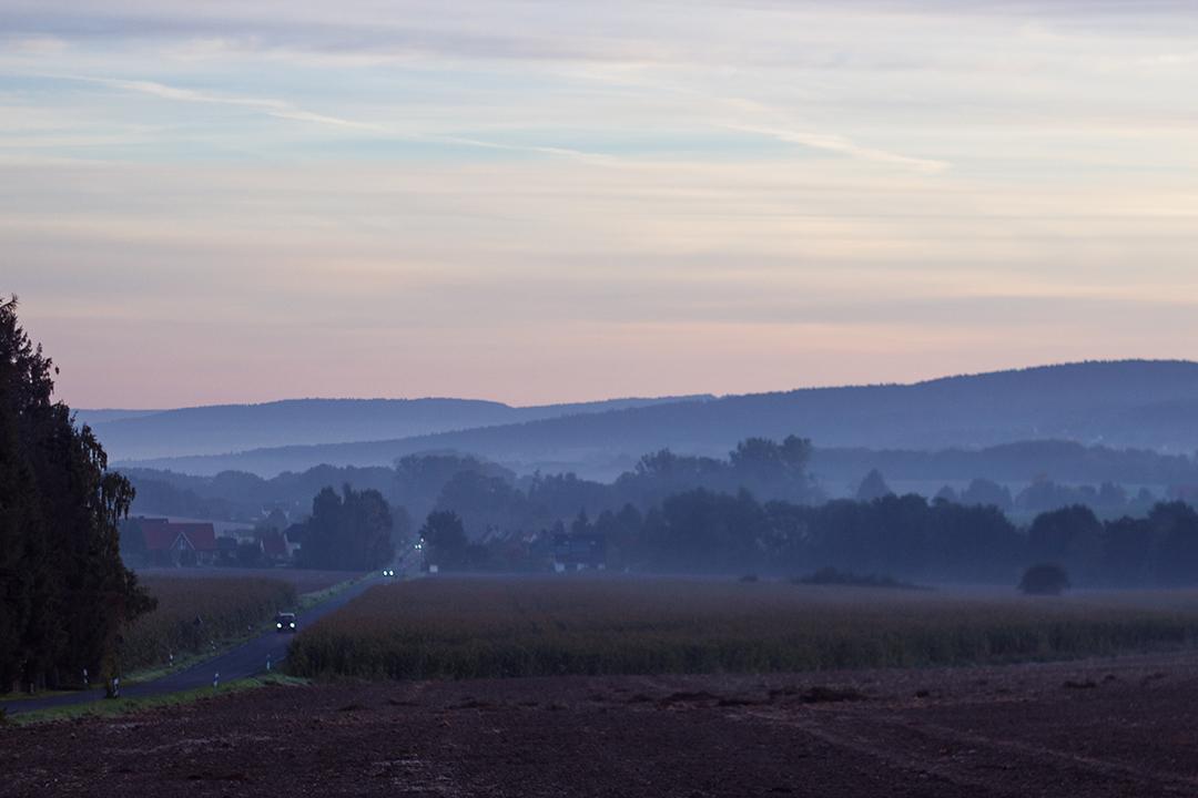 Landschaft Morgentau