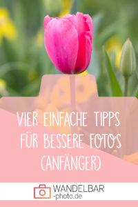 Vier einfache Tipps für deine Fotografie (Anfänger)