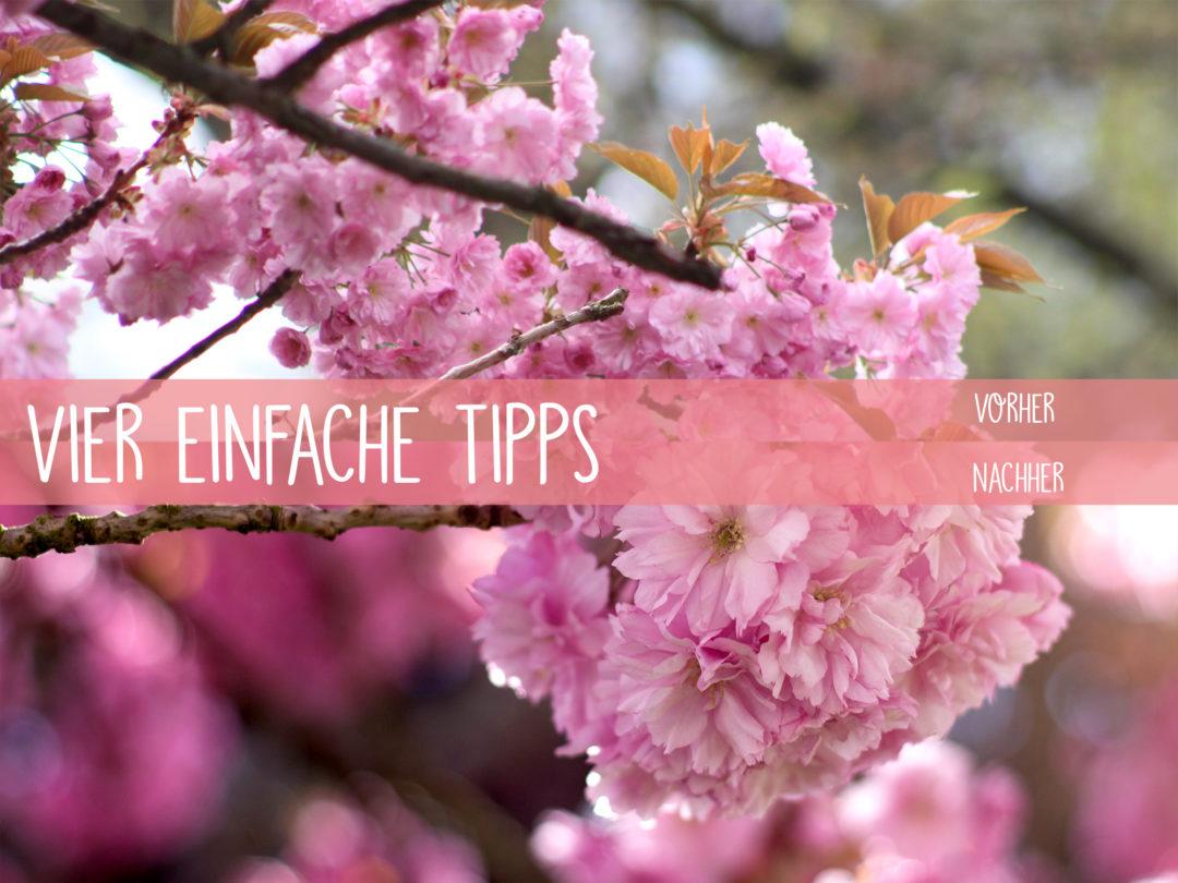 vier einfache Tipps Fotografie Cover