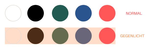 Farbpalette Gegenlicht-Fotografie